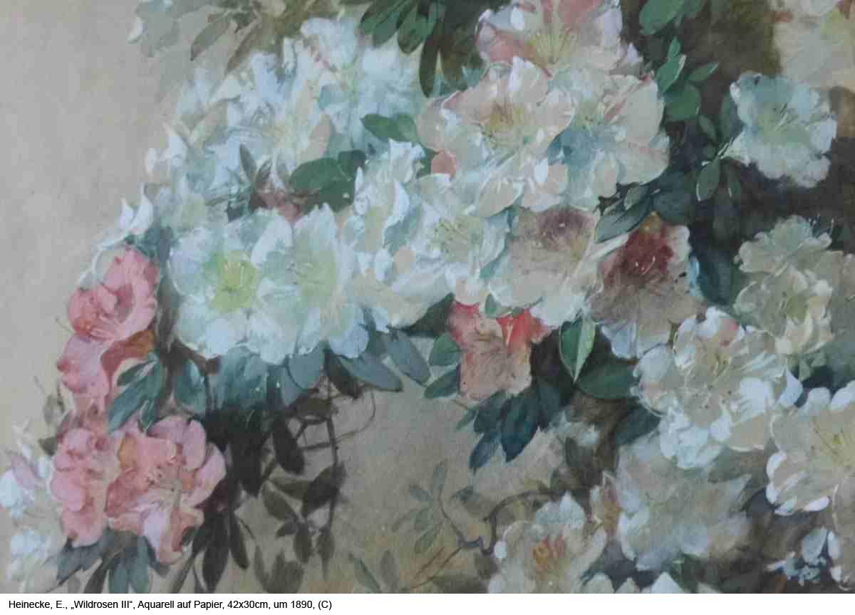 Heinecke-E.-Wildrosen-III-Aquarell-auf-Papier-42x30cm-um-1890-1